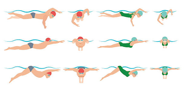 illustration of swimming. Drawing vector vector art illustration