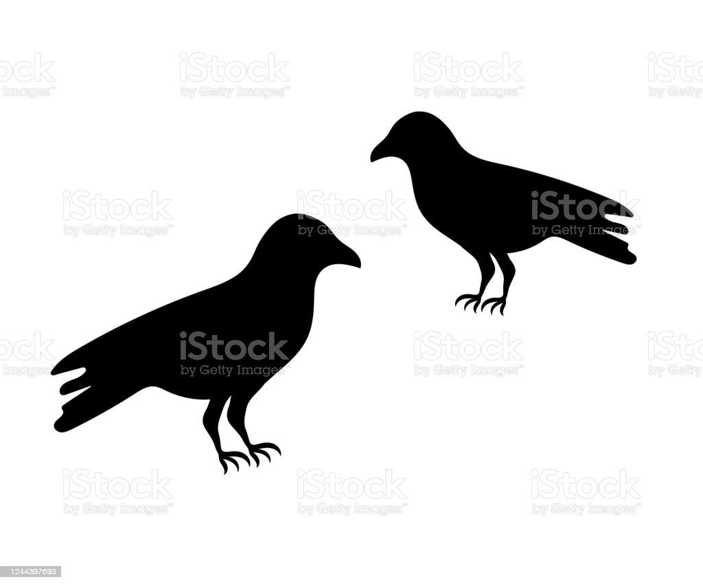 Illustration Of The Raven Silhouette Stock Illustration Download Image Now Istock Download 26 raven silhouette free vectors. https www istockphoto com vector illustration of the raven silhouette gm1244397693 362951323