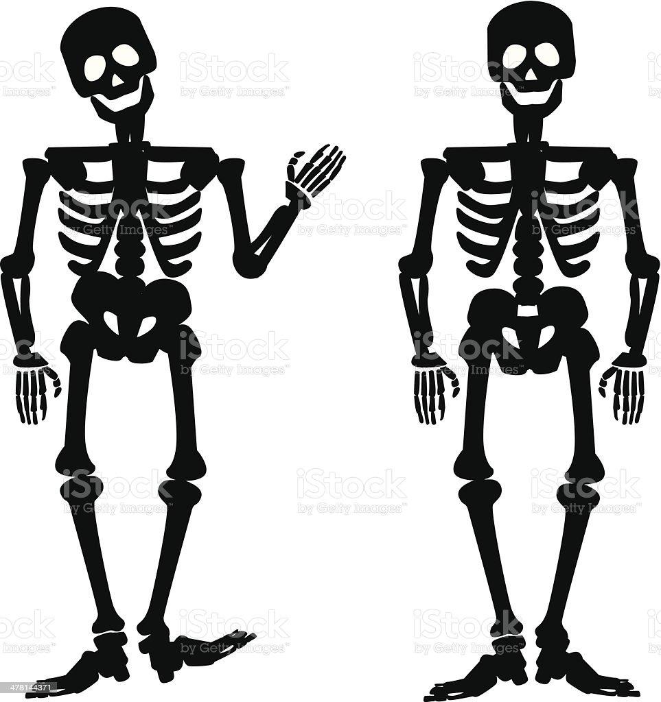 illustration of the silhouette of a human skeleton stock vector art rh istockphoto com skeleton vector art skeleton vector free