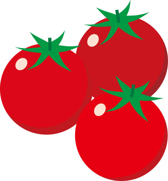 illustration of three cherry tomatoes - cherry tomato stock illustrations