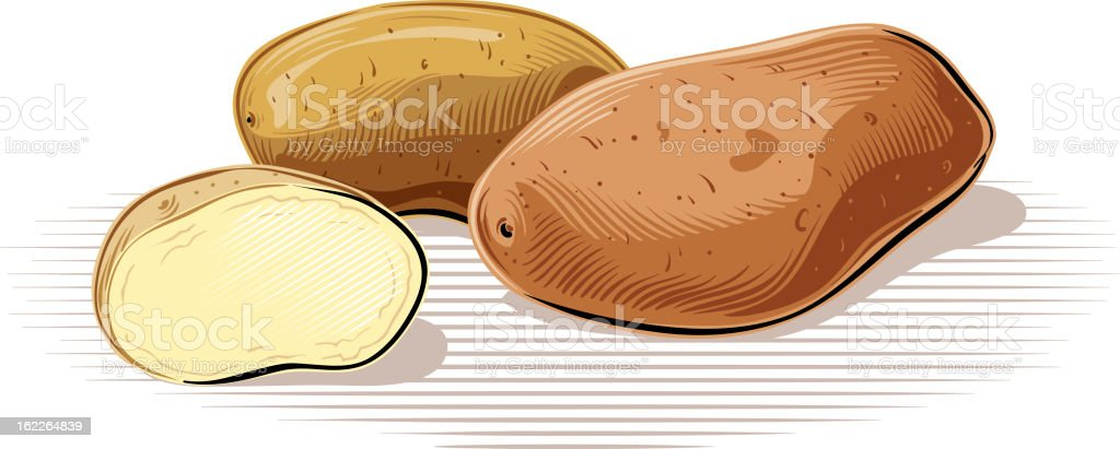 Illustration of three potatoes on a white surface royalty-free stock vector art