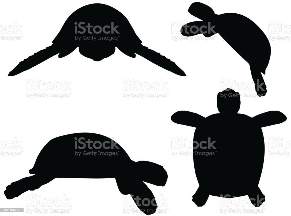Kaplumbağa Kaplumbağa Siluet çizimi Stok Vektör Sanatı Beyaz Arka