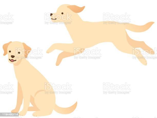 Illustration of two dogs vector id1194480714?b=1&k=6&m=1194480714&s=612x612&h=oqxilwoxaxbpc9u9sowmprtlsh5pv5fr1r4zys rzr8=