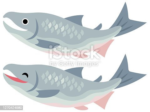 istock Illustration of two salmon 1270424580
