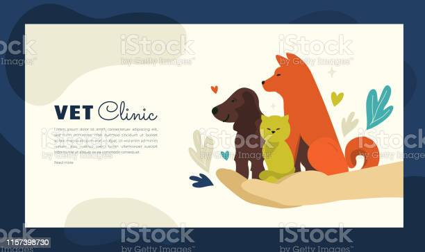 Illustration of vet clinic for web or print design vector id1157398730?b=1&k=6&m=1157398730&s=612x612&h= sy td lsndsjcgv0zhxoaosllx6wfdo8rw6r5lgwr8=