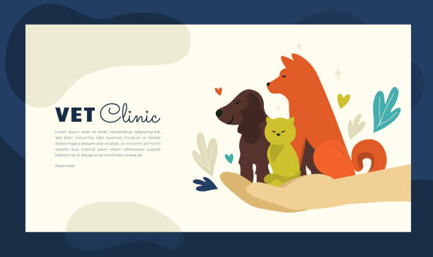 illustration of vet clinic for web or print design - animals background stock illustrations
