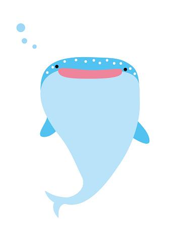 Illustration of whale shark 3