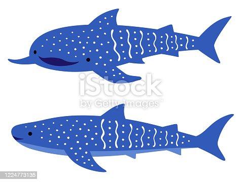 istock Illustration of whale shark 1224773135
