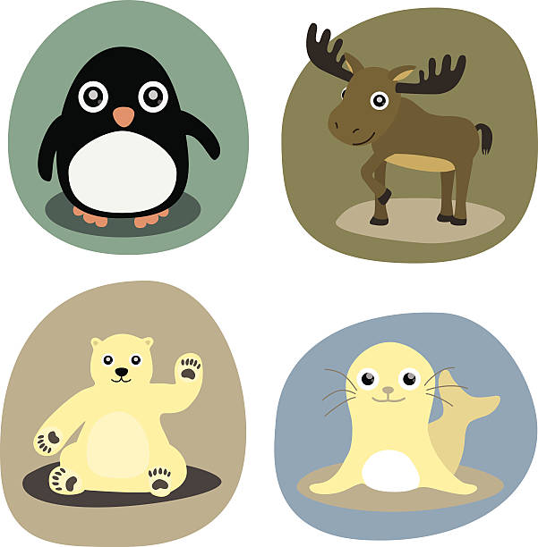 ilustracja przedstawiająca zima zwierząt, uszczelka, pingwin, moose, niedźwiedź polarny - ruth stock illustrations