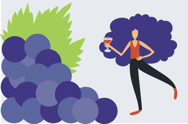 Illustration of woman drinking wine close to a bunch of grapes vector art illustration