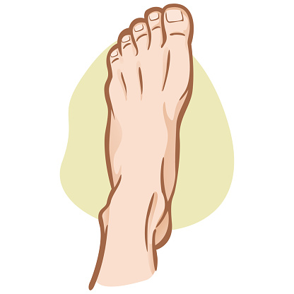 Illustration person, human foot, Caucasian, top view. Ideal for catalogs, informational and institutional guides
