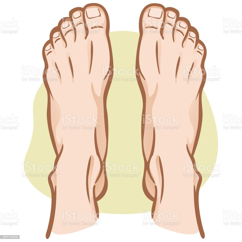 Illustration Person Pair Of Human Feet Caucasian Top View Ideal For ...