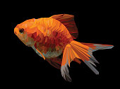 Illustration polygonal drawing of golden fish.