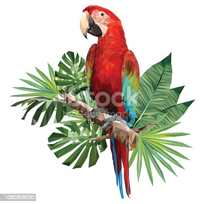 Illustration polygonal drawing of green wing macaw bird with tropical leaf.