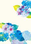 Illustration poster of rainy season hydrangea