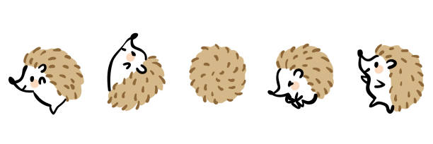 Illustration set of cute hedgehogs. Illustration set of cute hedgehogs. hedgehog stock illustrations