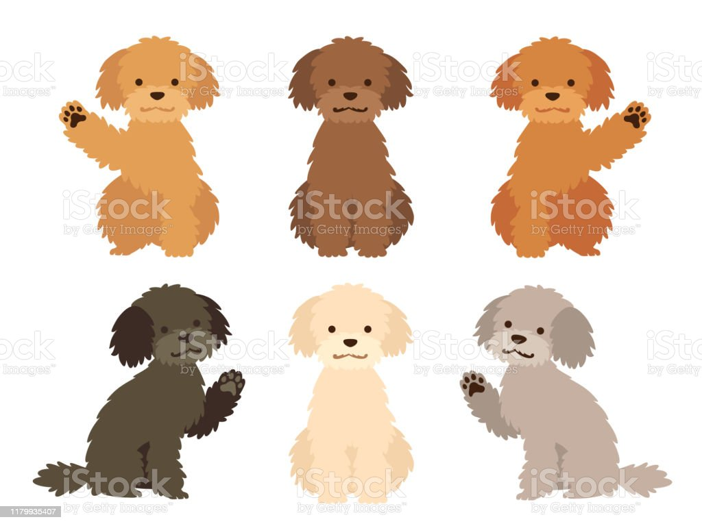 Illustration Set Of Dogs Of Various Hair Colors Stock ...