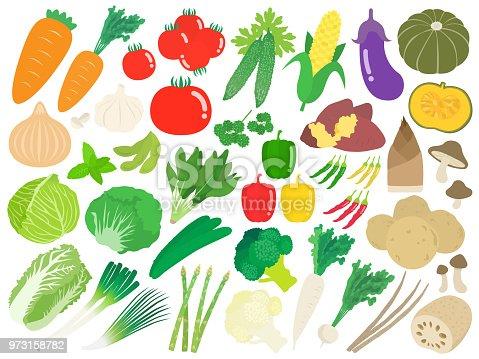 istock Illustration set of vegetables. 973158782