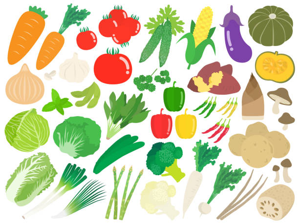 illustration set of vegetables. - cherry tomato stock illustrations