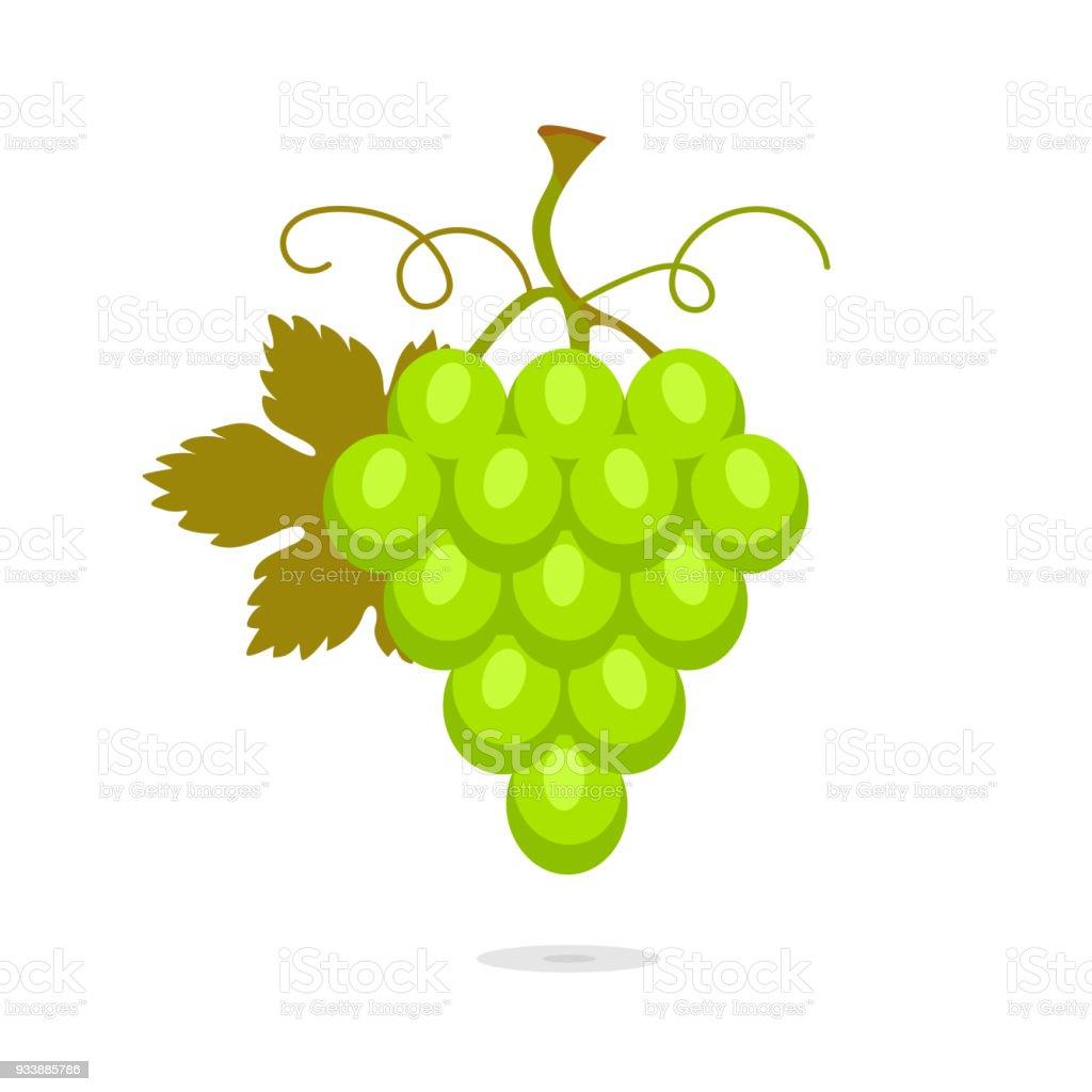 Ilustración de Ilustración Con Racimo De Uvas Verdes Con Hojas Fruta ...