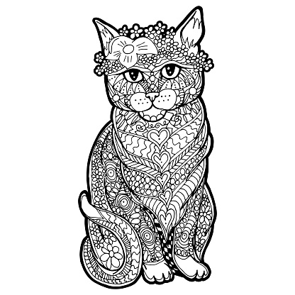 Illustration with hand drawn cat with doodles.