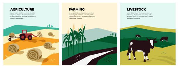 Illustrations of agriculture, farming and livestock – artystyczna grafika wektorowa