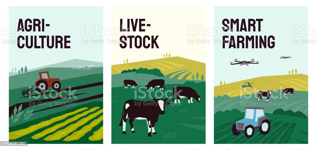 Illustrations Of Agriculture Smart Farming Livestock Stock Illustration Download Image Now Istock