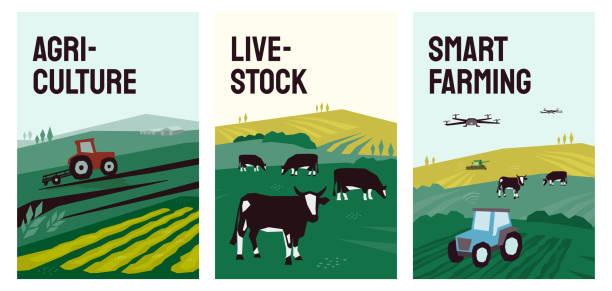 Illustrations of agriculture, smart farming, livestock – artystyczna grafika wektorowa