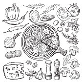 Illustrations of classical italian cuisine. Pizza and different ingredients. Fast food set tomato and mozzarella, olive and onion, salami and basil for pizza