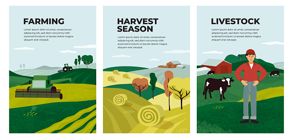 Illustrations of farming, livestock and harvest season