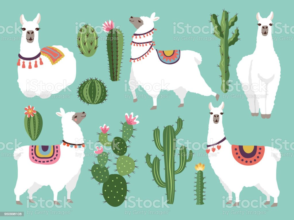 Illustrations of funny llama. Vector animal in flat style vector art illustration