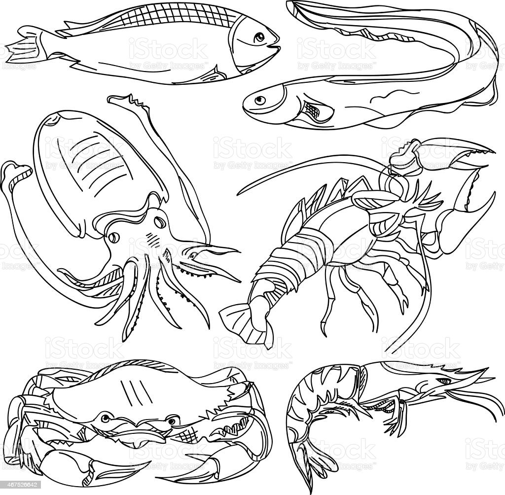 Illustrations of seafood isolated on white vector art illustration