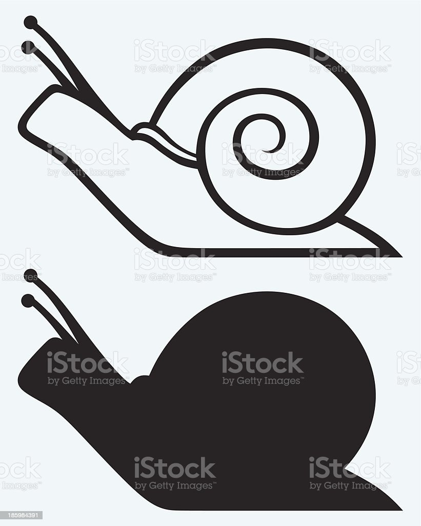 Illustrations of snail cartoons in outline and silhouette vector art illustration