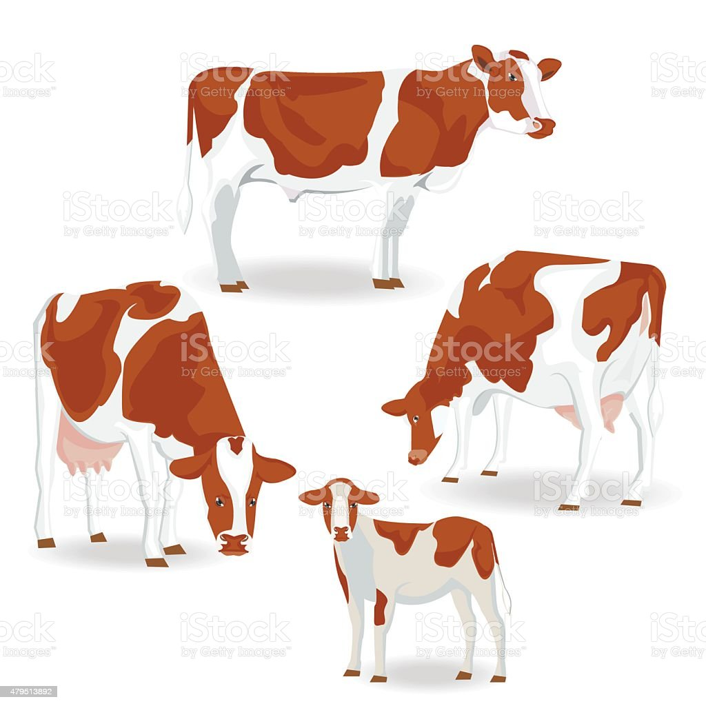 Illustrations.Brown cow. vector art illustration