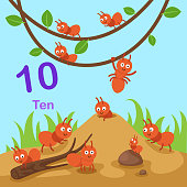 Illustrator of number ten vector