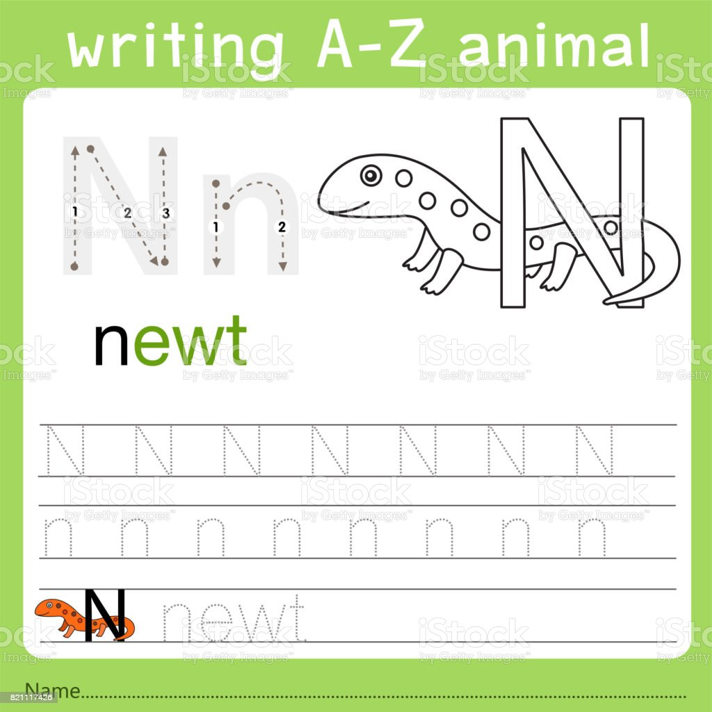 Image of: Isolated Illustrator Of Writing Az Animal Illustration Istock Illustrator Of Writing Az Animal Stock Vector Art More Images Of
