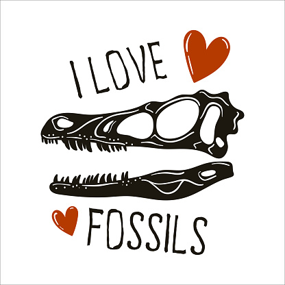 i-love-fossils copy