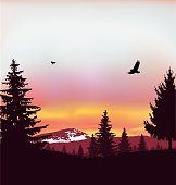 Image landscape. Silhouette of coniferous trees on the background of snowy mountains and colorful sky. Sunset. Flying eagles.