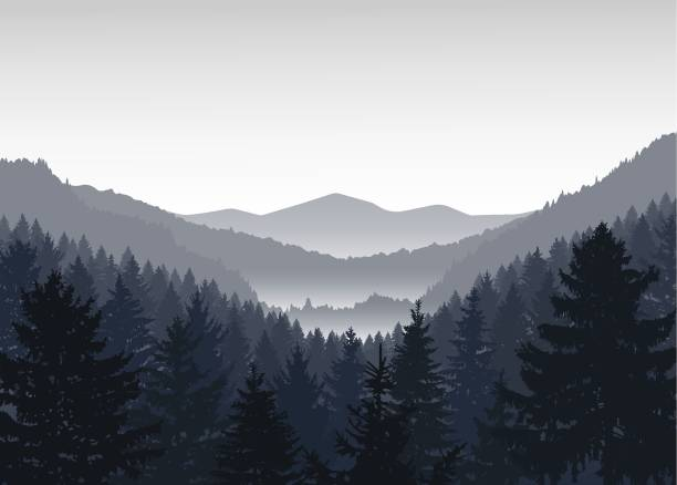 Image landscape. Image landscape. Panorama of mountains. Valley(canyon). Three peaks. Grey shades. black white snow scene silhouette stock illustrations