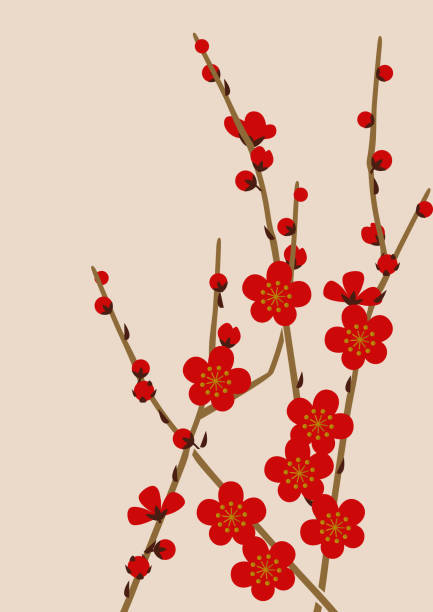 Image material of red plum blossoms.Image of spring of Japan. Japanese pattern design material. Material collection of New Year. Illustration of spring image. Illustration of spring image. Japanese pattern design material. plum blossom stock illustrations
