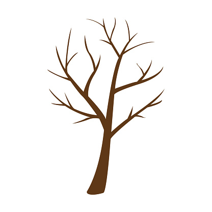 image of a tree on a white background, vector illustration