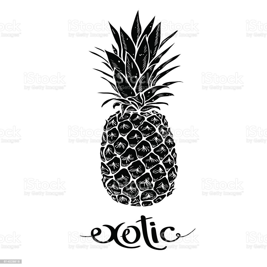 Image of black and white pineapple fruit  lettering exotic – artystyczna grafika wektorowa