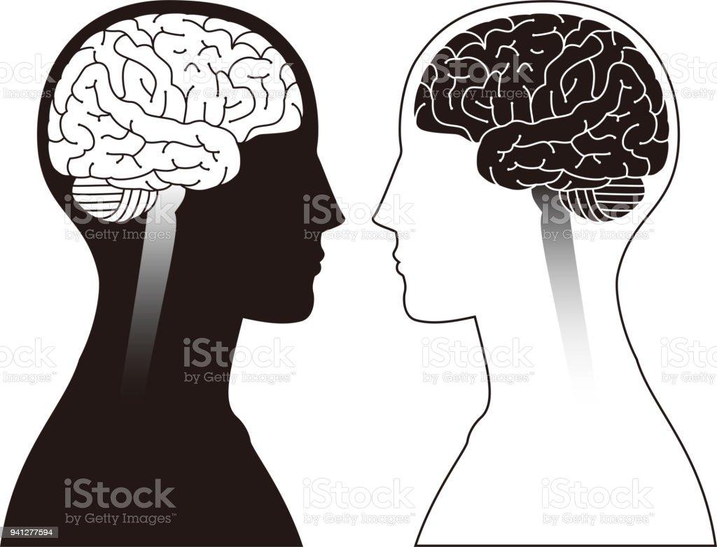 Image du cerveau image du cerveau vecteurs libres de droits et plus d'images vectorielles de blaine - minnesota libre de droits