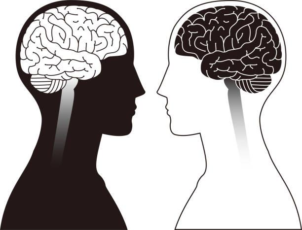 Image of brain vector art illustration