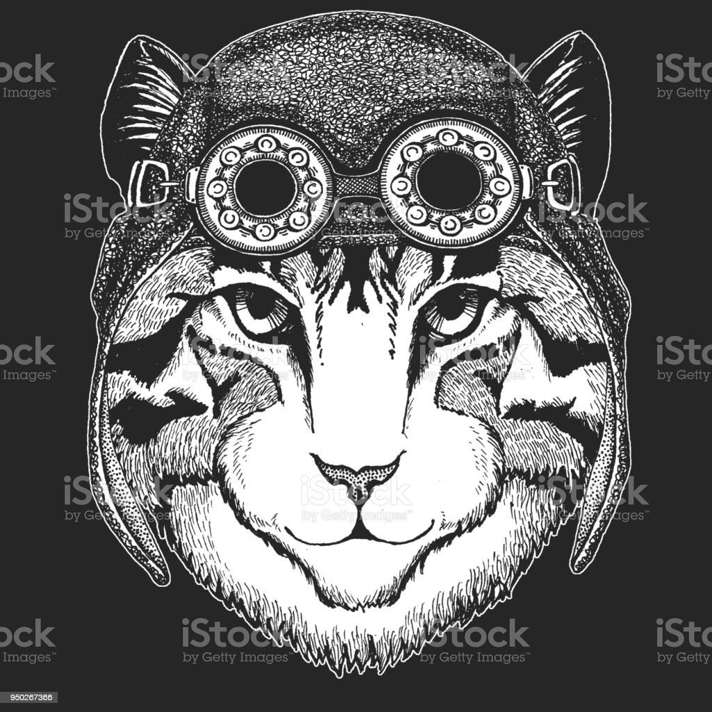Image of domestic cat Hand drawn illustration for tattoo, emblem, badge, logo, patch, t-shirt Cool animal wearing aviator, motorcycle, biker helmet. vector art illustration