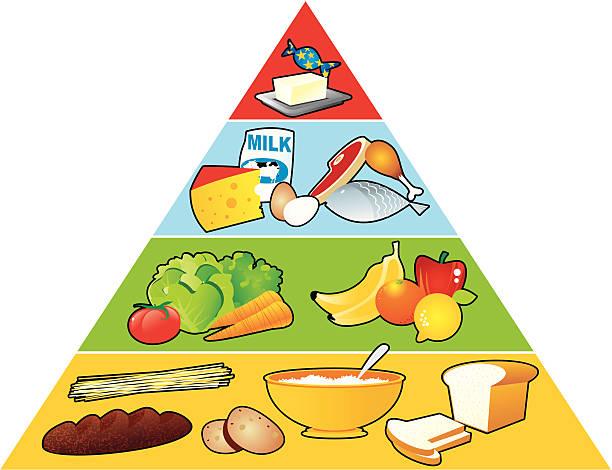 Food Pyramid Illustrations, Royalty-Free Vector Graphics ...