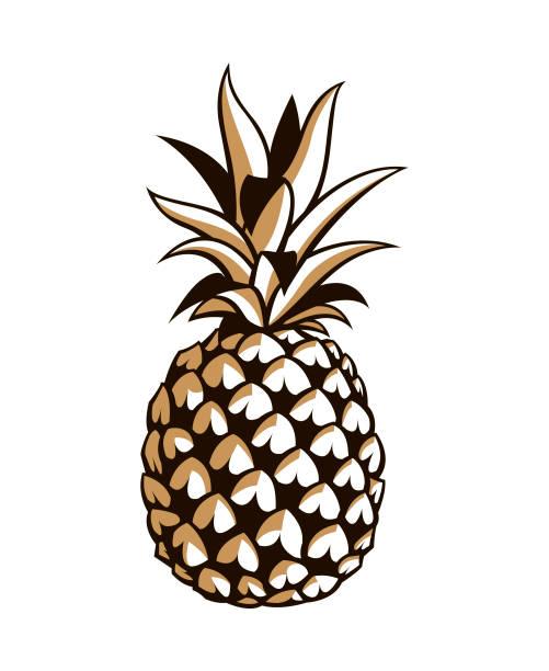 illustrazioni stock, clip art, cartoni animati e icone di tendenza di image of pineapple fruit - ananas