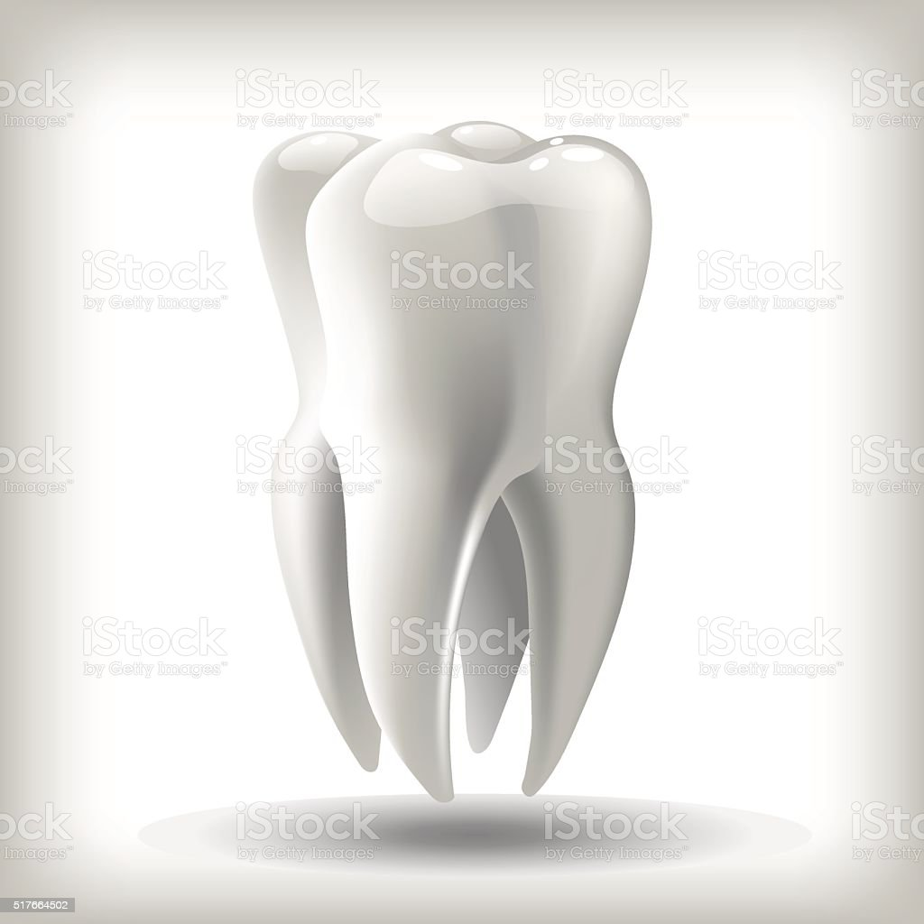 Bild Zahn Vektorillustration Für Zahnmedizin Stock Vektor Art und ...