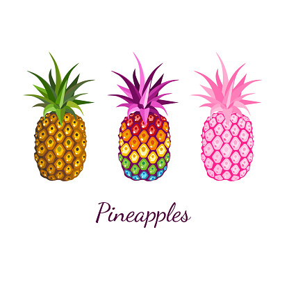 Image with three multicolored and rainbow pineapples fruit on white background. For modern print t-shirt, pride LGBT symbol, kid's design graphic element, branding, logo. Vector illustration.