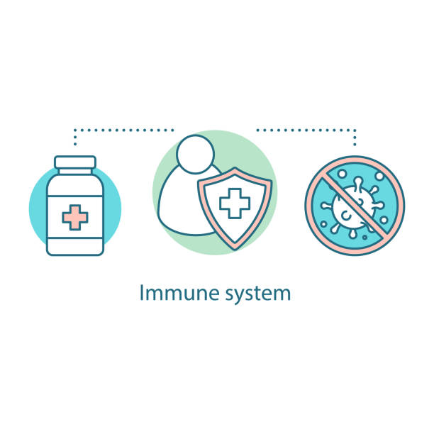 Immune system icon Immune system concept icon. Vector idea thin line illustration. Antiviral immunity. Disease prevention and health protection immune system stock illustrations